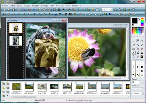 Download Photofiltre